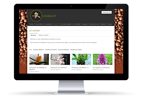 Association Orchidée 91 interface site wordpress